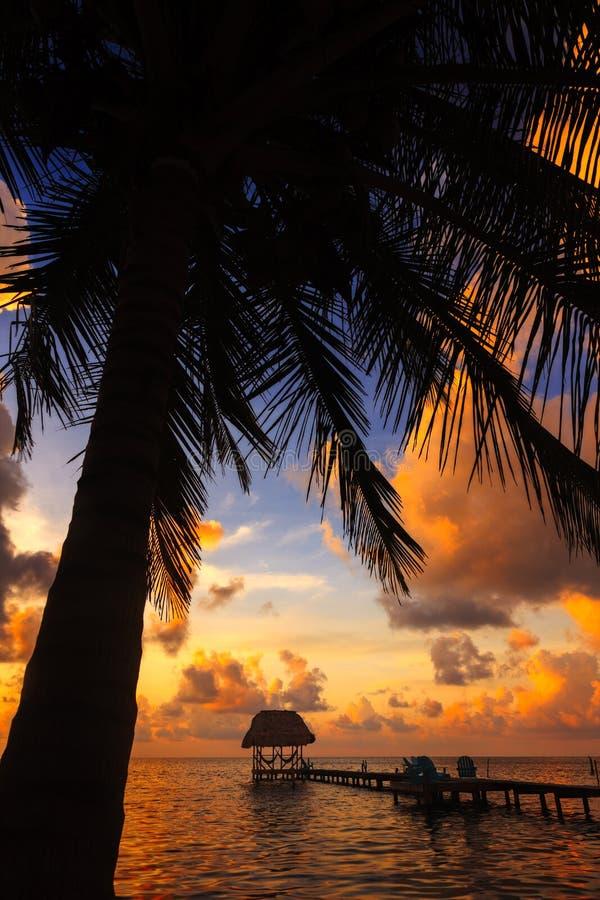Het Breeuwijzer van Belize Caye, Kokosnotenzonsondergang royalty-vrije stock foto