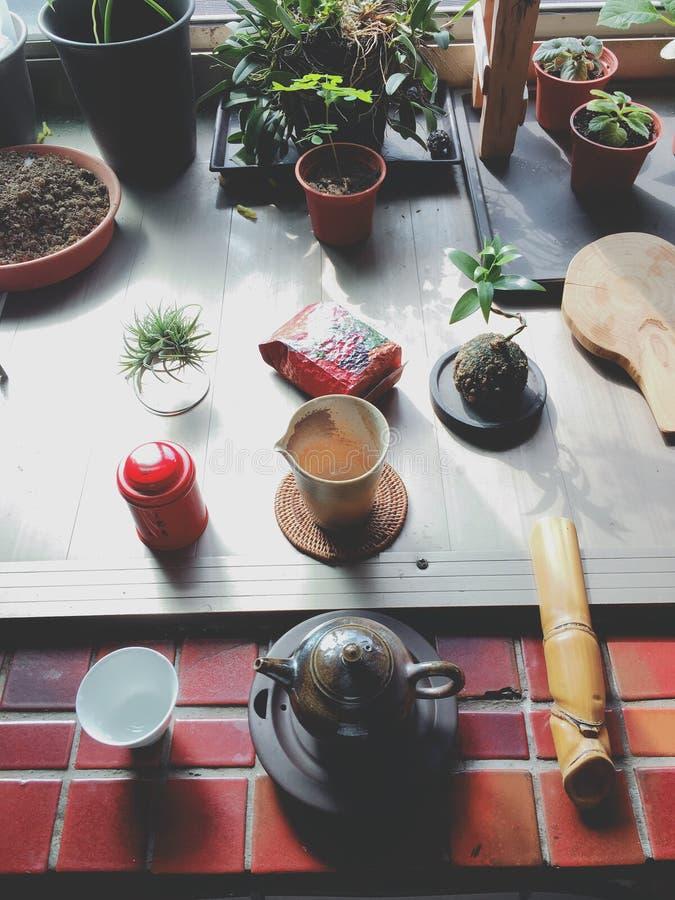 Het brouwen van traditie oolong thee in een prachtige middag stock foto's