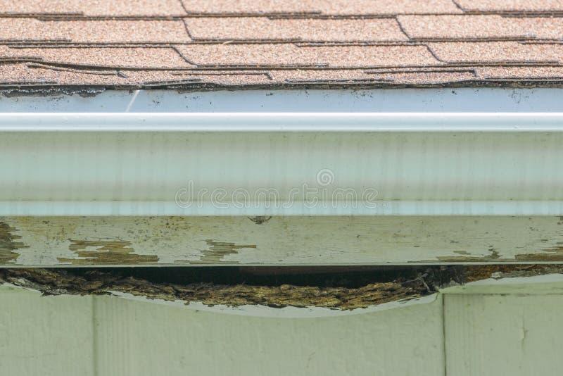 Het bruine asfalt shingled dak met goot op het doorstane opruimen en hout van garage royalty-vrije stock fotografie