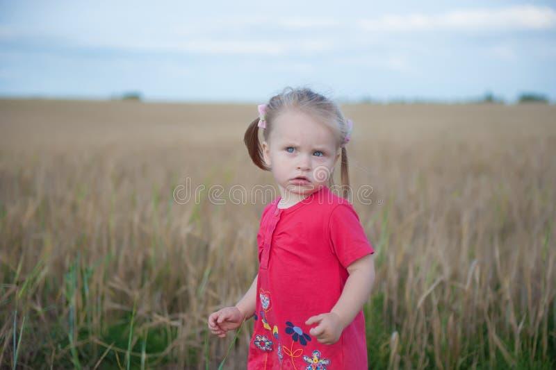 Het bruine haarmeisje spelen op het roggegebied stock afbeeldingen
