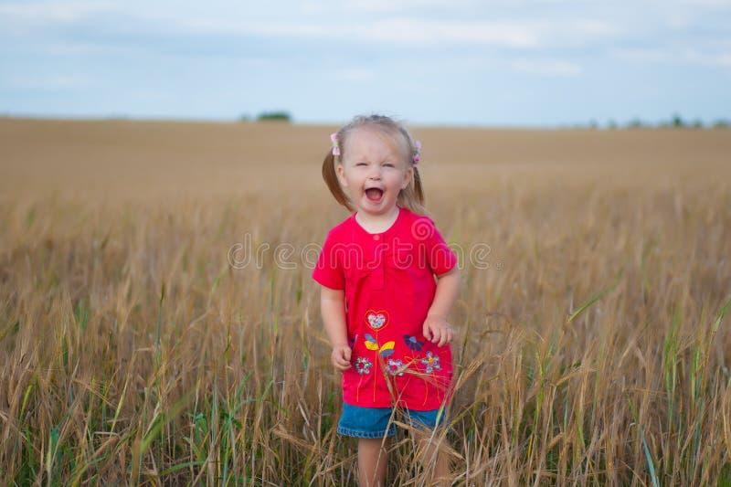 Het bruine haarmeisje spelen op het roggegebied royalty-vrije stock foto's