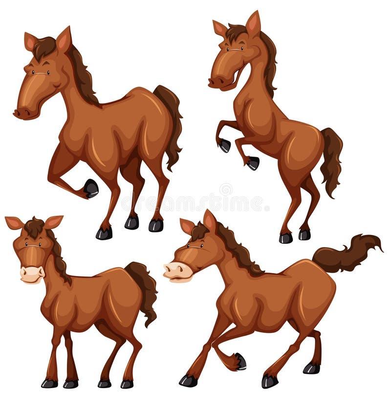 Het bruine paard in verschillende vier stelt stock illustratie