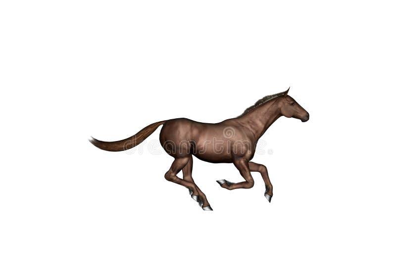 Het bruine Zijaanzicht van het Paard royalty-vrije illustratie