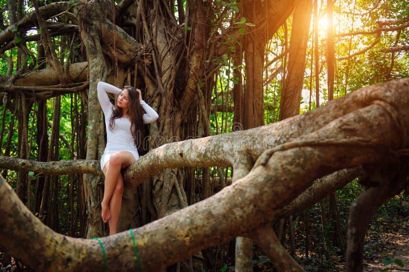 Het brunette met lang haar zit op een boom met krullende hangende takken Het jonge aantrekkelijke meisje in een korte witte kledi stock foto's