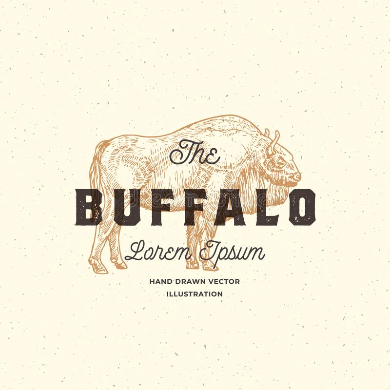 Het Buffels Abstract Vectorteken, het Symbool of Logo Template Hand Getrokken Bison Sketch Illustration met Retro Typografie stock illustratie