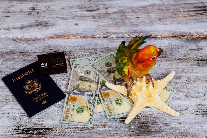 het camerapaspoort en het papegaaigeld voor vakanties op overzees spelen houten achtergrond mee stock foto