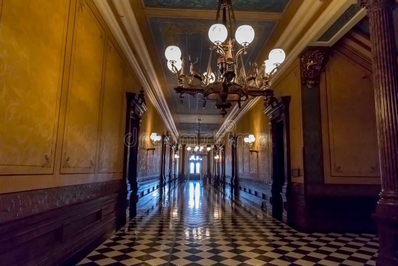 Het Capitool van de Staat van Michigan royalty-vrije stock afbeelding