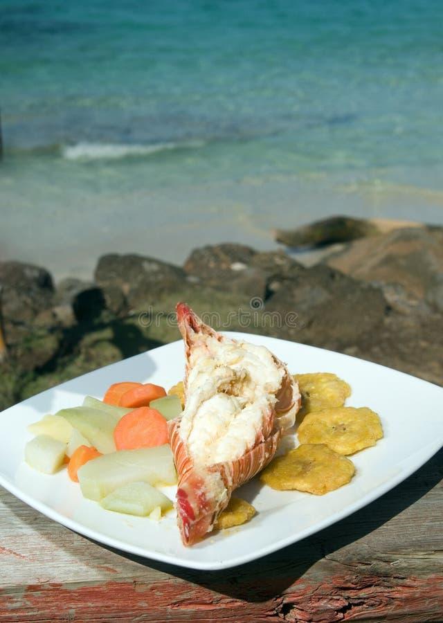 Het Caraïbische Eiland Nicaragua van het zeekreeft tostones Graan royalty-vrije stock foto