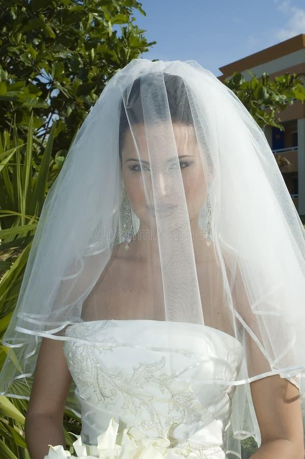 Het Caraïbische Huwelijk van het Strand - Bruid met Sluier stock foto's