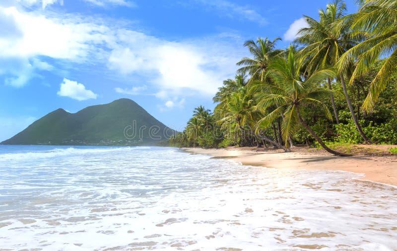 Het Caraïbische strand, het eiland van Martinique stock fotografie