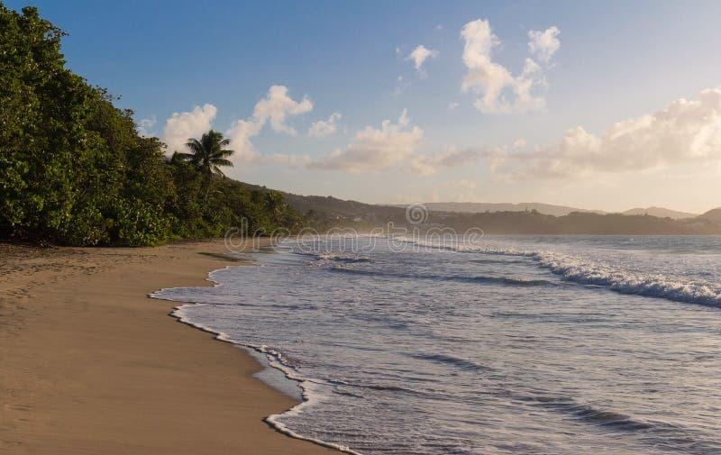 Het Caraïbische strand, het eiland van Martinique royalty-vrije stock afbeeldingen