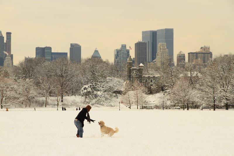 Het Central Park van New York na sneeuw royalty-vrije stock afbeeldingen