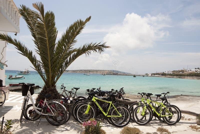 Het centrum van de fietshuur stock foto's
