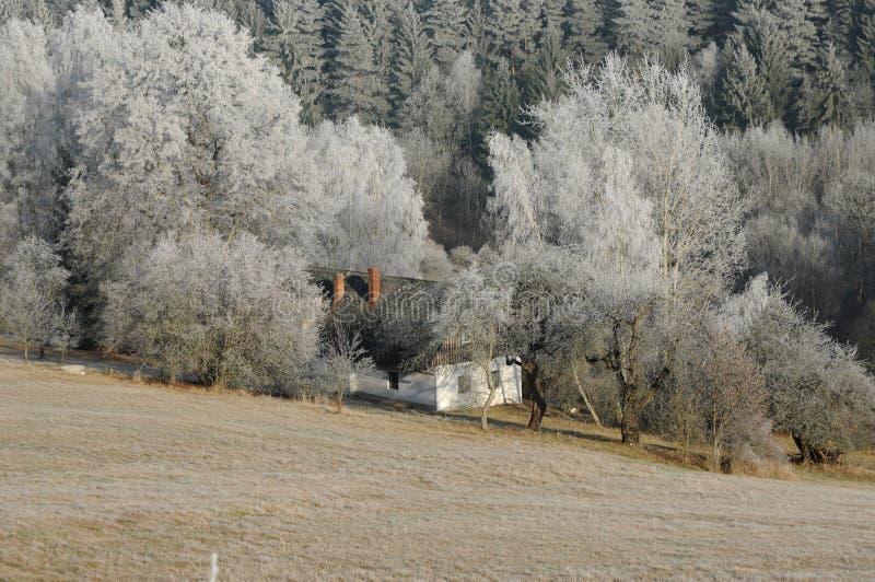 Het chalet van het land in de winter stock afbeelding