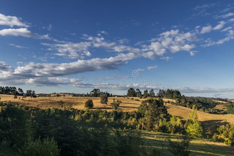 Het Chileense landschap van Patagonië stock foto's