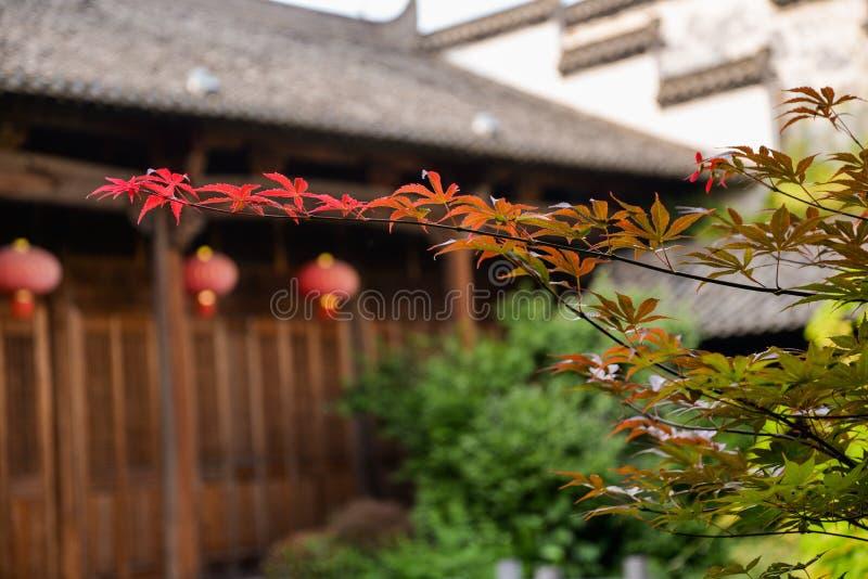 Het Chinese traditionele plaatsen Esdoornblad en oude tempel royalty-vrije stock foto