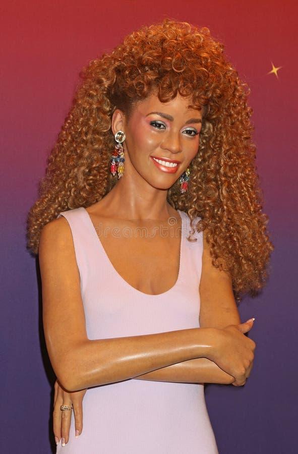 Het Cijfer van de Was van Whitney Houston stock foto's