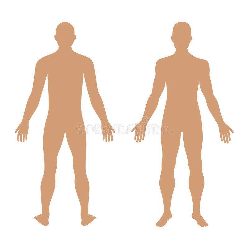 Het cijfersilhouet van het manier man stevig malplaatje (de voorzijde & de rug wedijveren royalty-vrije illustratie