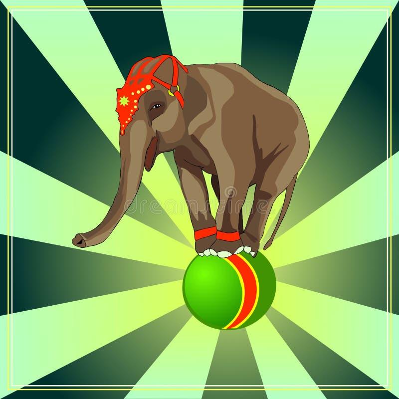 Het circus toont Olifant op de bal Opgeleide dieren Vector stock illustratie