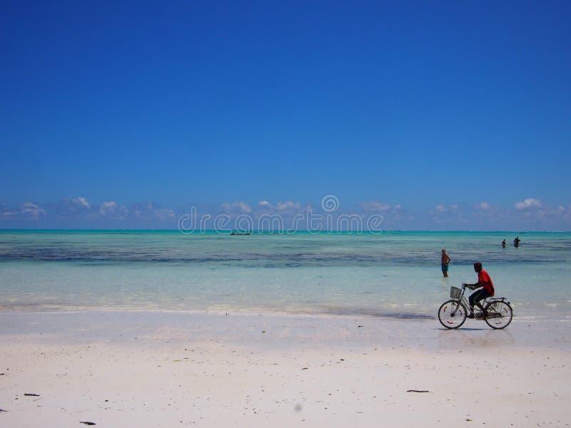 Het cirkelen op het strand van Zanzibar royalty-vrije stock afbeelding