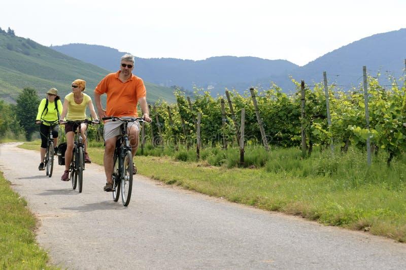 Het cirkelen vakantie langs wijngaarden op de rivier Moezel stock fotografie