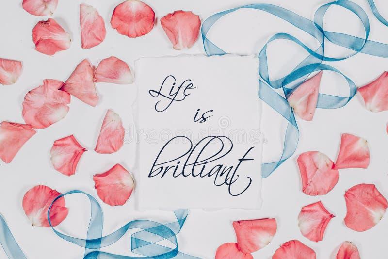 Het citaatleven is briljant in kalligrafiestijl wordt geschreven op papier met roze bloemblaadjes en blauw lint dat Vlak leg, hoo royalty-vrije stock fotografie