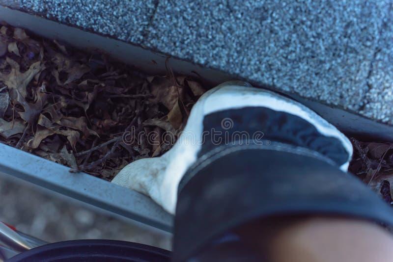 Het close-up dient handschoenen in die droge bladeren van goot in Amerika schoonmaken stock foto's