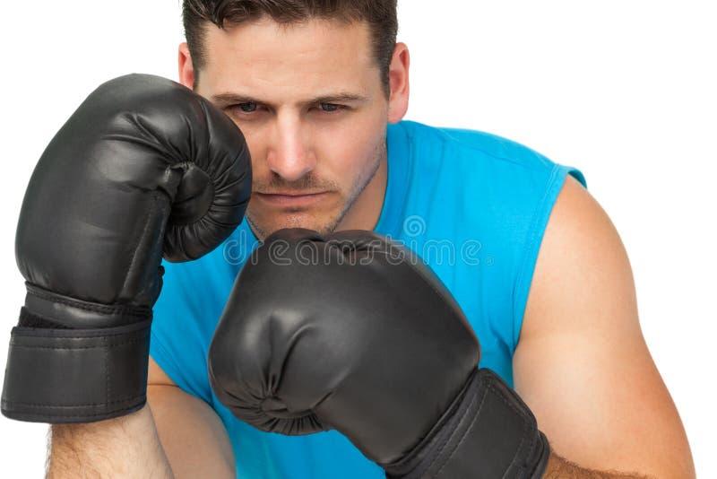 Het close-up van een bepaalde mannelijke bokser concentreerde zich bij de opleiding stock afbeelding