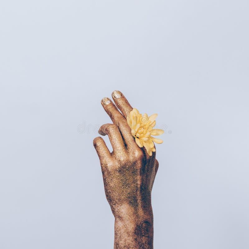 Het close-up van een gouden vrouwelijke hand met geel nam toe stock foto