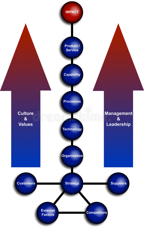 Het commerciële Diagram van de Organisatie vector illustratie