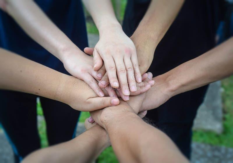 Het commerciële team die en stapelt samen hun handenmensen die voor de zaken van het samenwerkingssucces toetreden bevinden zich  stock afbeeldingen