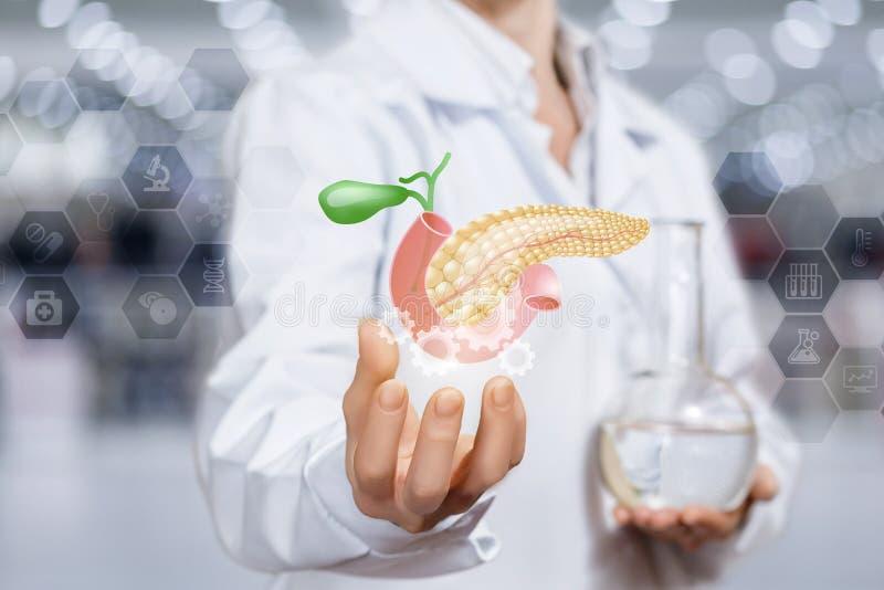 Het concept het mechanisme van de behandeling van de alvleesklier stock afbeelding