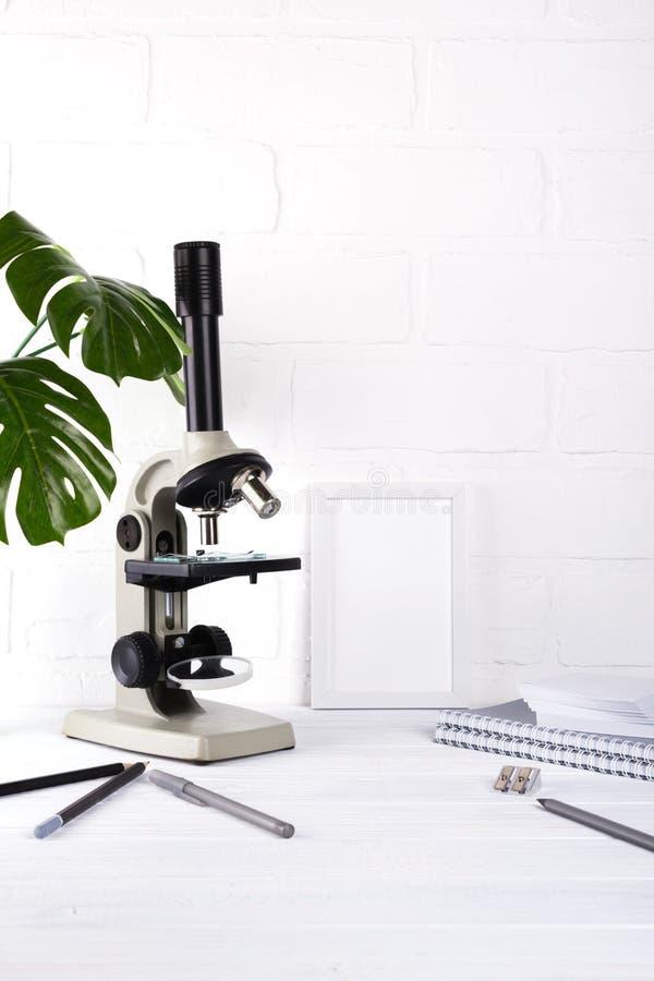Het concept van het biologieonderwijs - Assortiment van levering, microscoop Minimalisticschool of bureauwerkruimte stock afbeelding