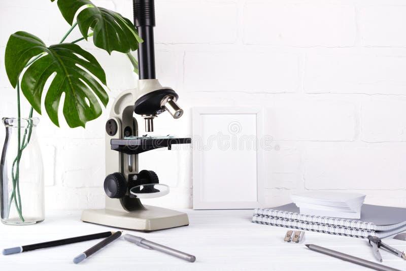 Het concept van het biologieonderwijs - Assortiment van levering, microscoop Minimalisticschool of bureauwerkruimte royalty-vrije stock fotografie