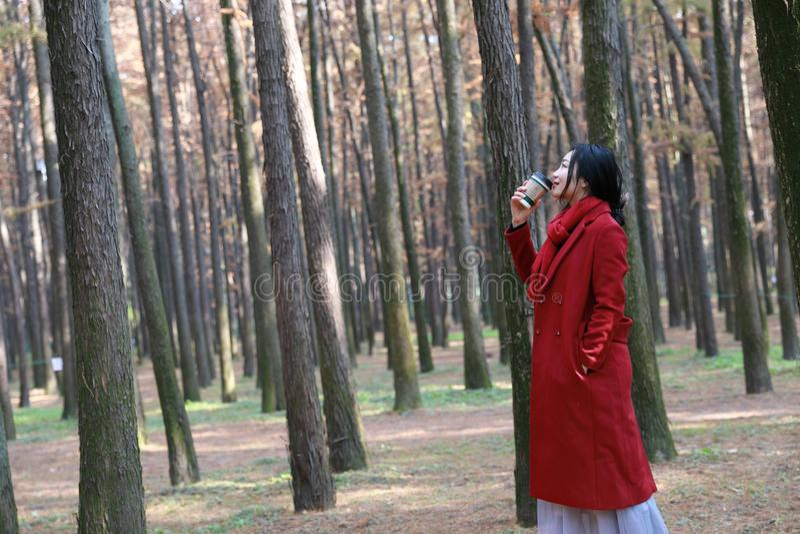 Het concept van de daling - de herfstvrouw het drinken koffie royalty-vrije stock afbeelding