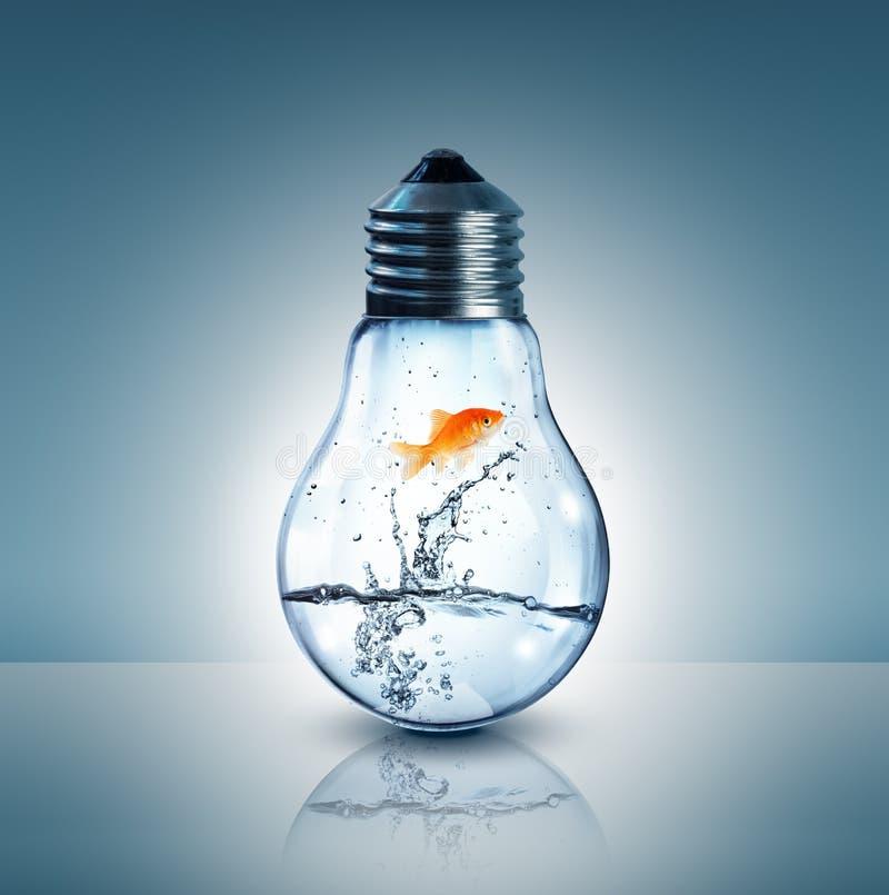 Het concept van de energieverandering stock foto's