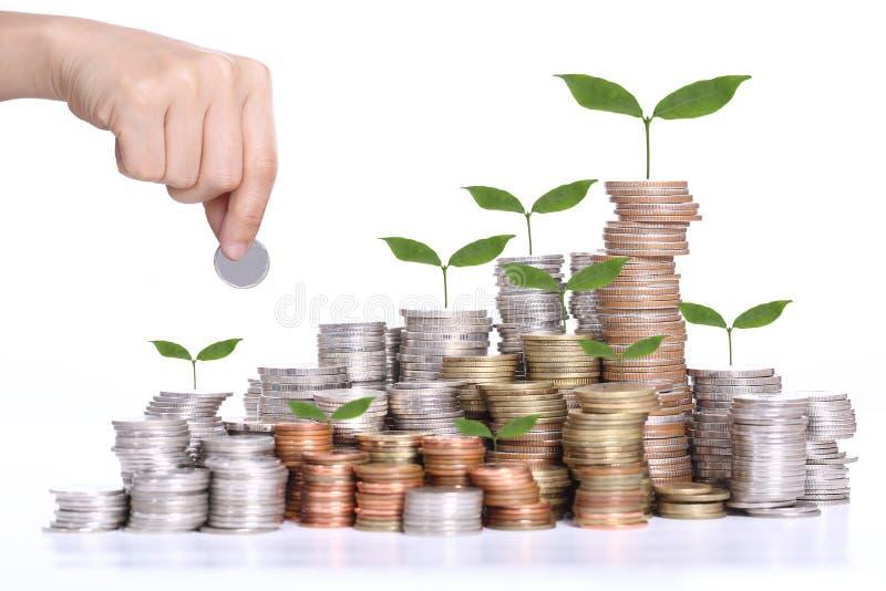Het concept van de geldbesparing met van de muntstukstapel en boom groeiend concept stock foto