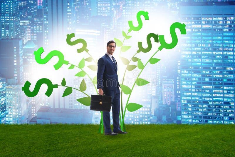 Het concept van de geldboom met zakenman in het kweken van winsten royalty-vrije stock foto's