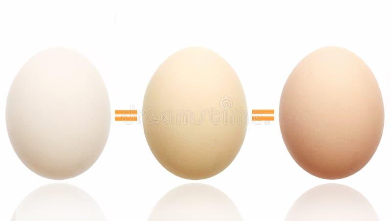Het concept van de gelijkheid stock afbeelding