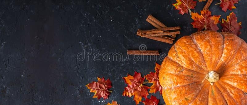 Het concept van de herfst Geïsoleerd Pompoen, eikels, gele bladeren, kaneel op een donkere achtergrond stock fotografie