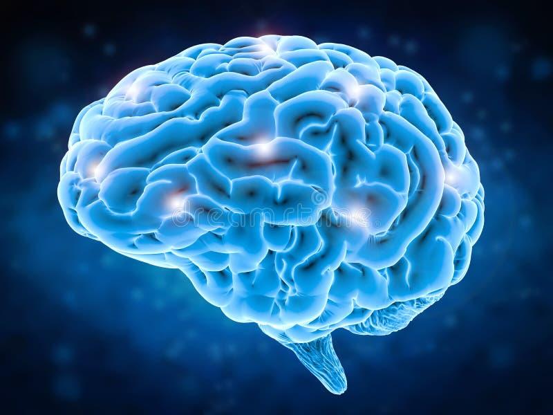 Het concept van de hersenenmacht vector illustratie