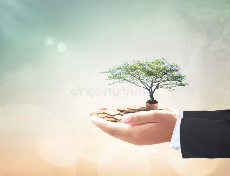 Het Concept van de investering stock afbeelding