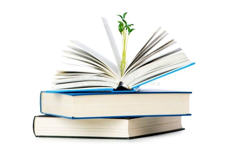 Het concept van de kennis met boeken stock fotografie