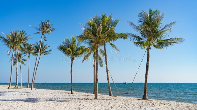 Het concept van de vakantie Jonge vrouwenschommeling op een strandschommeling stock fotografie