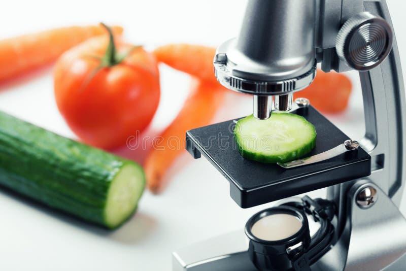het concept van de voedselkwaliteitcontrole - komkommerinspectie stock foto
