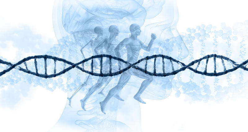 Het Concept van DNA vector illustratie