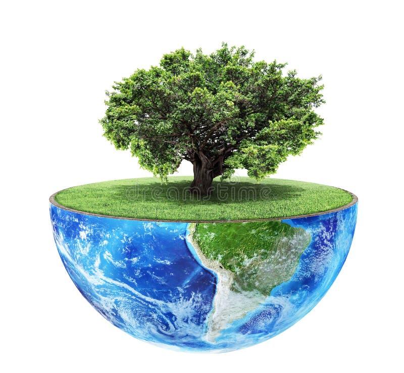 Het concept van Eco royalty-vrije stock foto's