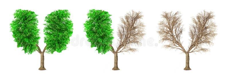 Het concept van Eco De reeks bomen heeft een geïsoleerde vorm van menselijke lungsv vector illustratie