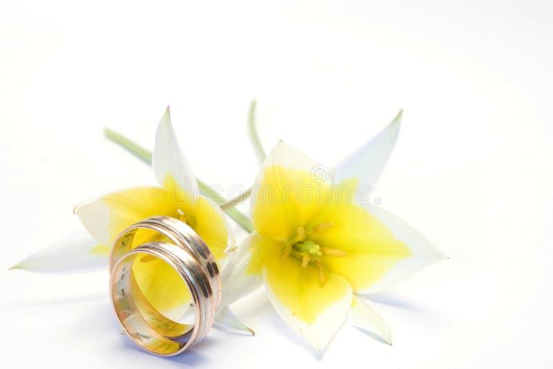 Het concept van het huwelijk royalty-vrije stock foto's