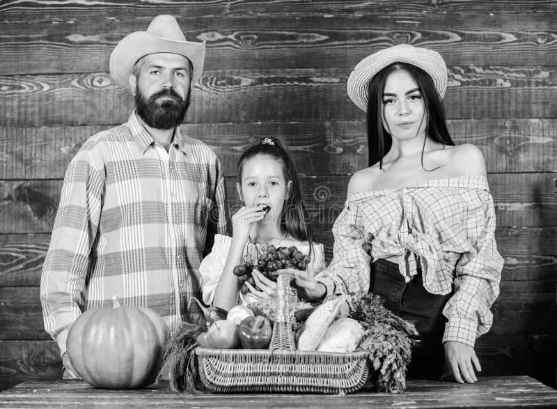 Het concept van het oogstfestival Familielandbouwers met oogst houten achtergrond De ouders en de dochter vieren oogstvakantie stock foto's